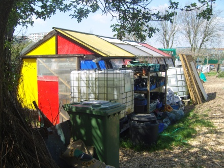 wordpressdotcom colourful shed