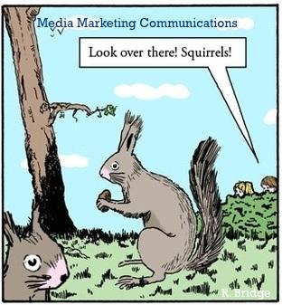 media squirrel